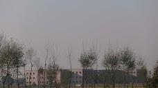 Arif Memorial Hospital Kasur