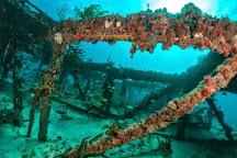 Abyss Dive Center, Marathon, United States