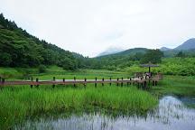Kagurame Lake, Beppu, Japan