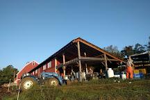 Walpole Valley Farms, Walpole, United States