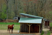 Jenness Farm, Nottingham, United States