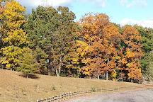 Meeks Park, Blairsville, United States