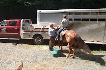 Vx3 Trail Rides, Blowing Rock, United States