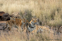 Tiger Canyon Private Game Reserve, Philippolis, South Africa