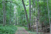 McDowell Battlefield, McDowell, United States