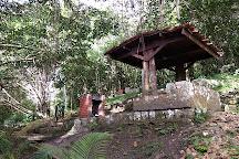 Parque Nacional Cerro el Copey, La Asuncion, Venezuela
