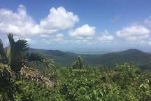 Maison de la Foret, Basse-Terre Island, Guadeloupe