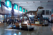 Museo Argentino de Ciencias Naturales Bernardino Rivadavia, Buenos Aires, Argentina