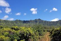 Silver Falls Ranch, Kilauea, United States