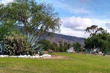 Granja de Avestruces, Villa de Leyva, Colombia