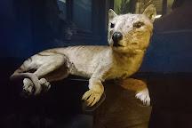 Natural History Museum (Naturhistorisches Museum), Vienna, Austria