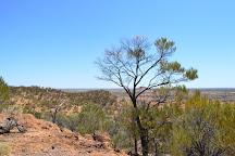 Dinosaur Stampede at Lark Quarry Conservation Park, Winton, Australia