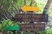 Ecological Sanctuary, Santa Elena, Costa Rica