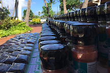 Salty Wahine Gourmet Hawaiian Sea Salts, Hanapepe, United States
