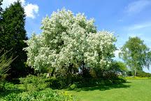 Beth Chatto's Plants & Gardens, Colchester, United Kingdom