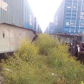 Железнодорожная станция  Cherkessk