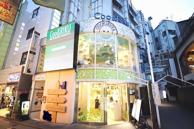 Coo & RIKU Shibuya Spain Sakaten Pet Shop