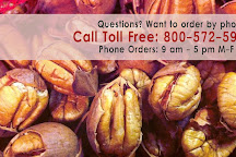 Natchitoches Pecans, Cloutierville, United States