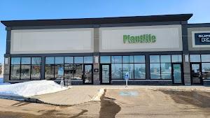 Plantlife Cannabis (Grande Prairie)