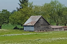 Wooden Shoe Tulip Farm, Woodburn, United States