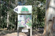 Parque Aventura, Figueira da Foz, Portugal