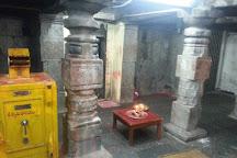 Sri Raja Rajeswara Swamy Devasthanam, Vemulawada, India