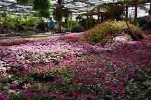 Beijing Garden of World Flowers, Beijing, China