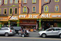 Ripley's Believe It or Not! Gatlinburg, Gatlinburg, United States