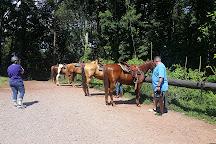 Ocoee HorseRide, Charleston, United States