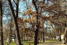 Oak Park, Minot, United States