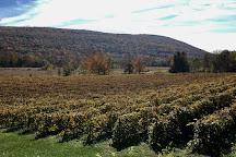 Inspire Moore Winery & Vineyard, Naples, United States