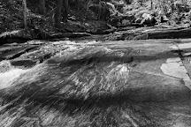 Pearson's Falls, North Carolina, United States