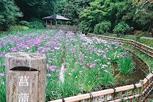 Ikuta Ryokuchi Park, Kawasaki, Japan