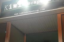 Kiwi Escape room, Figueres, Spain
