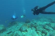 Mojo Dive, Puerto Del Carmen, Spain