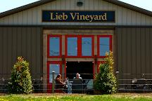 Lieb Cellars, Cutchogue, United States
