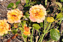 Rose Garden, Richmond, United States