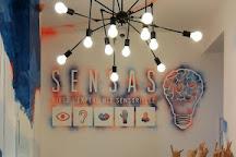 SENSAS Lyon, Lyon, France