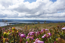 Keimiotunturi Fell, Muonio, Finland