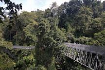 Canopy Walkway, Mae Rim, Thailand