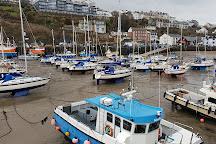 Ilfracombe Harbour, Ilfracombe, United Kingdom