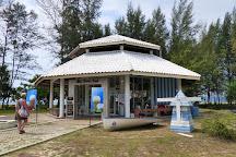 Sea Turtle Conservation Centre, Thai Mueang, Thailand