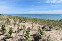 Lake Michigan, Illinois, United States