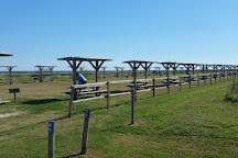 Galveston Island State Park, Galveston, United States