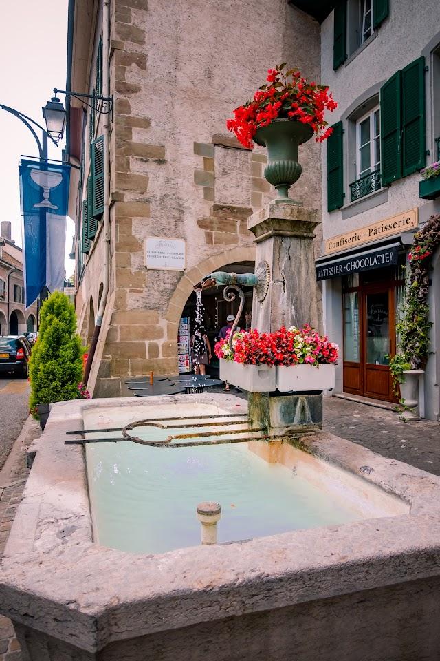 Museun the Vieux-Coppet
