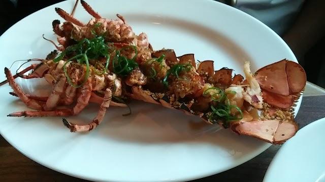 Doc B's Restaurant + Bar - Coral Gables