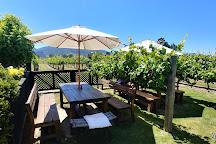 Saint Clair Family Estate Vineyard Kitchen, Blenheim, New Zealand