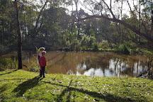 Cobboboonee National Park, Heywood, Australia