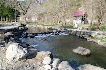 Yuzawa Fishing Park, Yuzawa-machi, Japan
