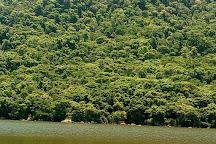 Parque Estadual do Rio Vermelho, Florianopolis, Brazil